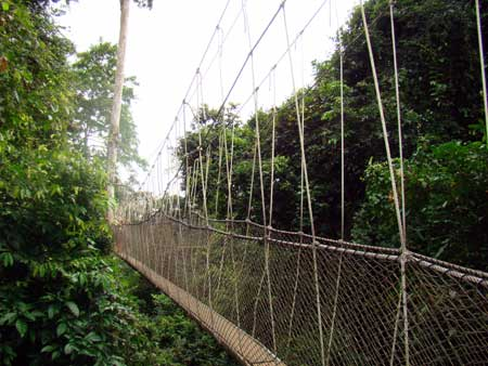 kakum national forest zipline